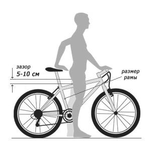 Определение размера рамы велосипеда